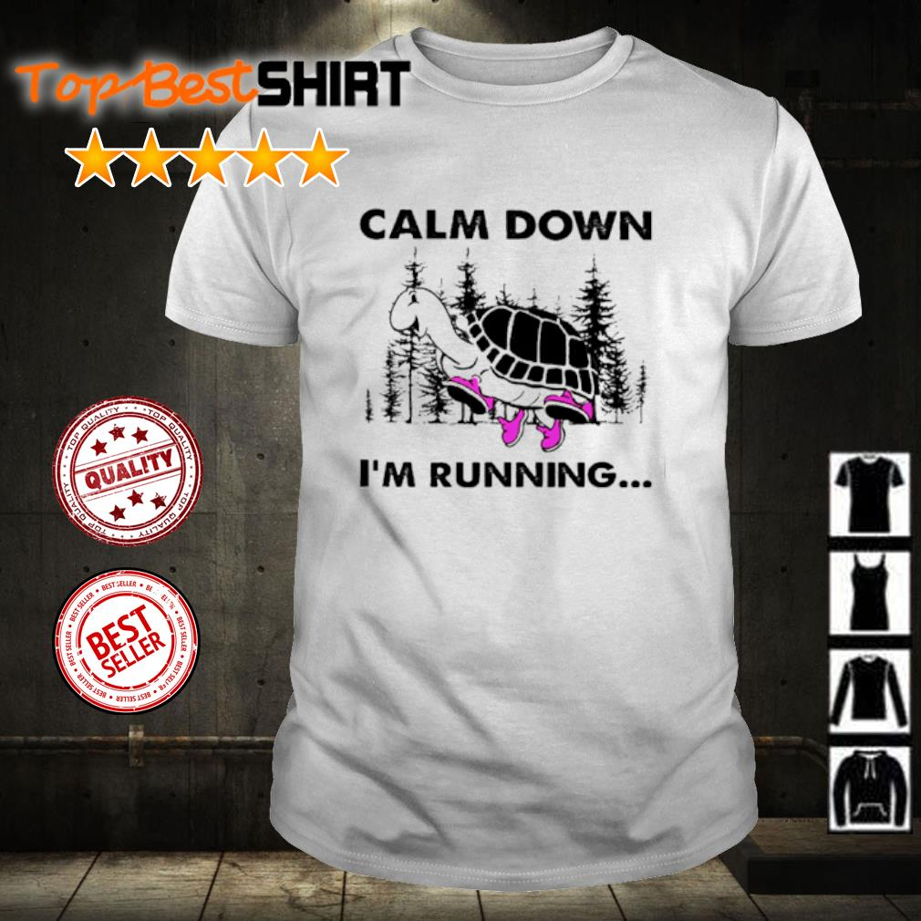 Turtle Calm down I'm running shirt